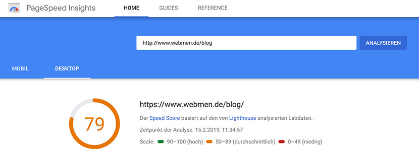 Screenshot PageSpeed WebMen